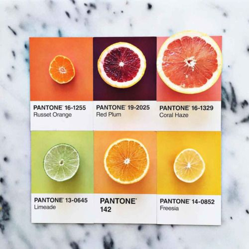 pantonecolorfruit